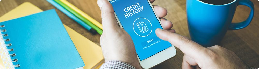 checking credit history on mobile phone