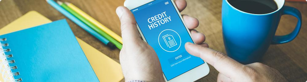 browsing for credit history on smartphone